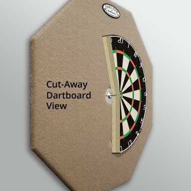 Cut-Away Dartboard View